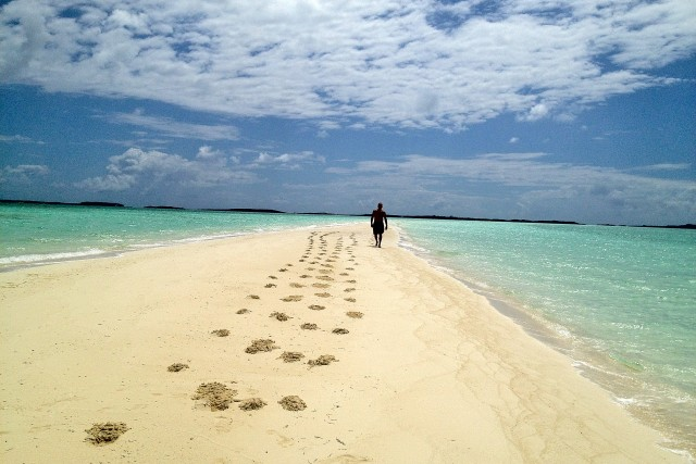 Sandbar Footprints