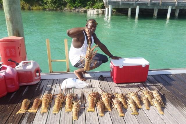 Antonio Johnson's Lobsters
